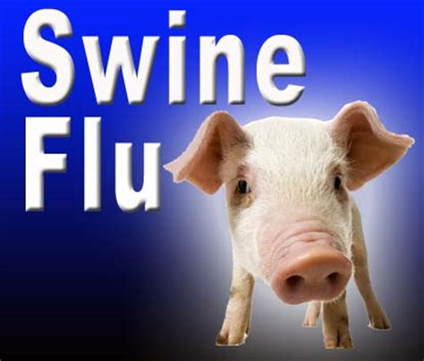 swing flu minnesota west virginia report two new cases of swine