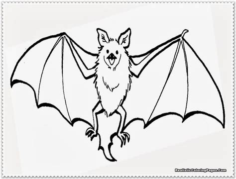 printable coloring pages bat bat template for kids coloring home