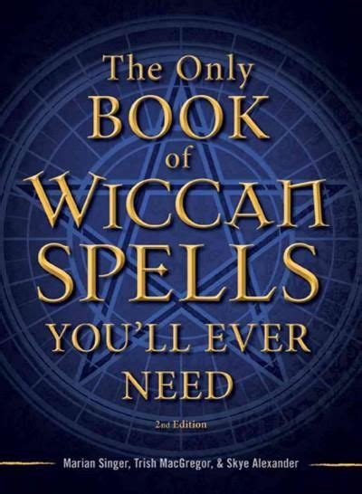 the only tarot book 1598694898 1000 ideas about male witch on pagan men