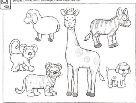 imagenes animales salvajes para colorear dibujos para colorear animales salvajes y dom 233 sticos imagui