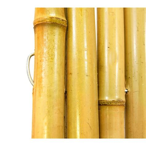 Bamboo Fence Roll Home Depot by Bamboo Privacy Fence Fencing Related Keywords Bamboo