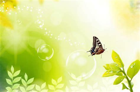 butterflies background butterfly backgrounds wallpaper cave