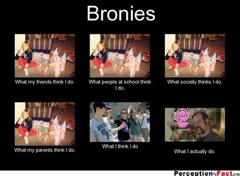 Bronies Meme - bronies what people think i do what i really do