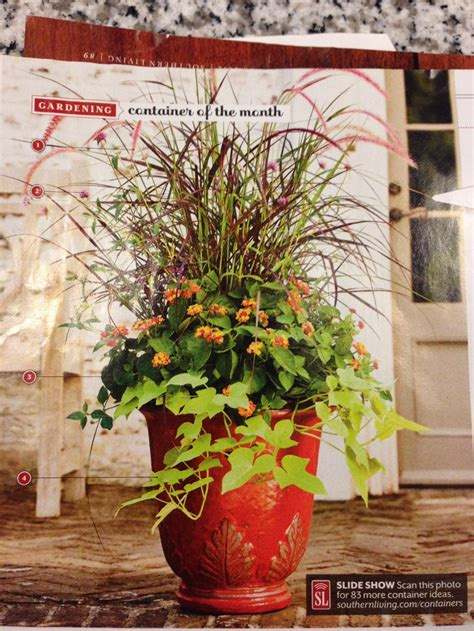 fall plants container gardening pinterest fall container plant pretending i ll make this