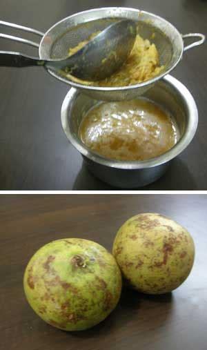 bel ka sharbat wood apple squash ब ल क शरबत bel ka sharbat wood apple squash