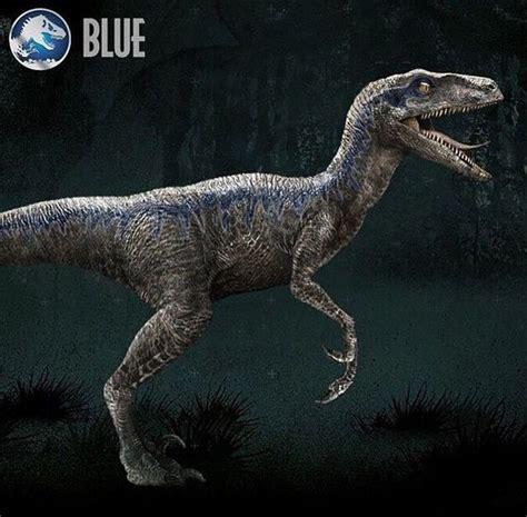 google images dinosaurs velociraptor jurassic world blue google search