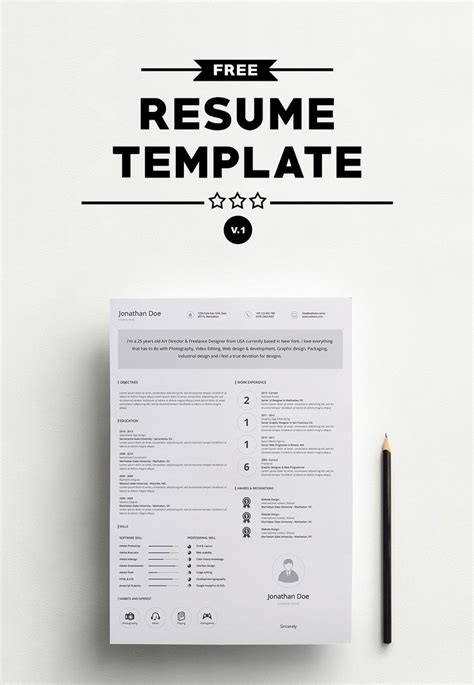 Professional Resume Template 2