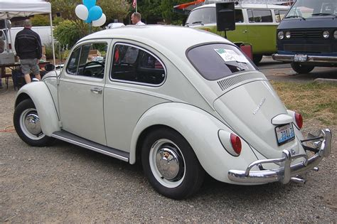 volkswagen bug white pinterest the world s catalog of ideas