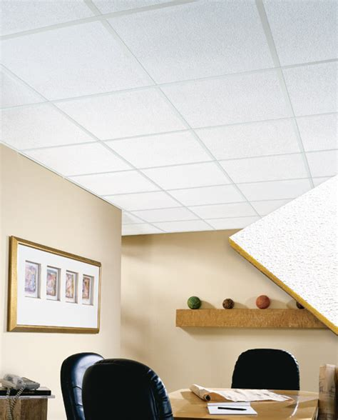 Residential Ceiling Tiles by Residential Acoustic Ceiling Tiles Talkbacktorick