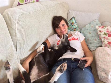 tiere suchen ein zuhause moderatorin wdr aktuell on quot hallo hundefreunde tiere suchen