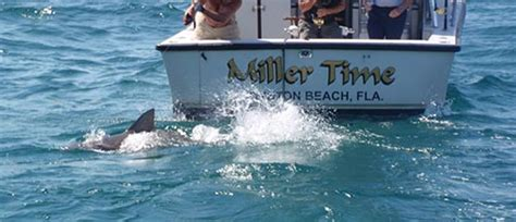 party boat fishing delray beach florida fishing charters boynton beach marina