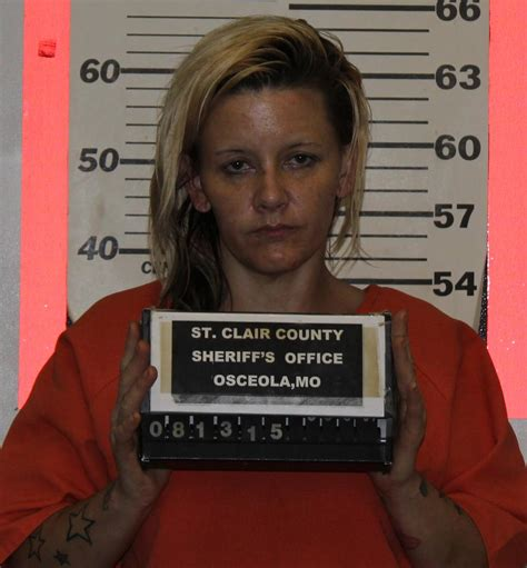 St Clair County Warrant Search St Clair County Sheriff S Office News Release For Aug 10 17 2015 Press Releases