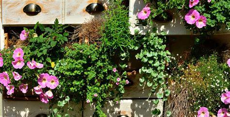 Come Creare Un Orto In Terrazzo by Come Fare Un Orto Sul Balcone In Pochi Passi
