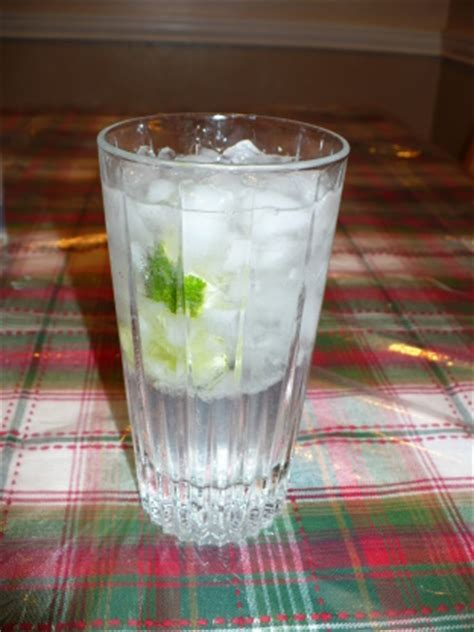 vodka tonic vodka tonic recipe genius kitchen