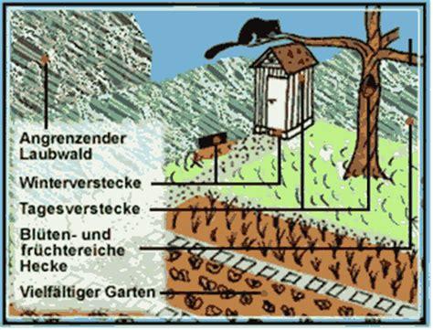 Bauplan Für Nistkästen 5734 by Bauen Und Tiere Igel