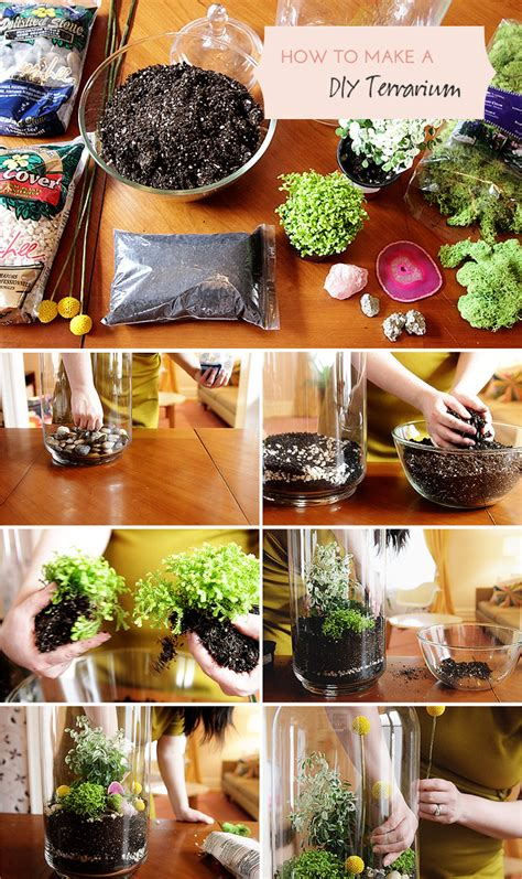 Making It Lovely | how to make a diy terrarium making it lovely