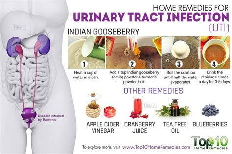 home remedies for urinary tract infection uti the