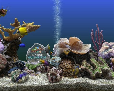 serenescreen marine aquarium download papel de parede 3d com movimento gratis windows 7 imagui