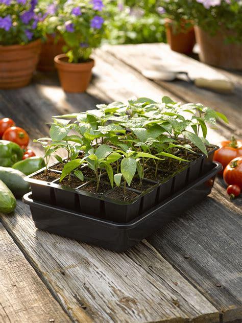 growease seed starter kit  shipping gardeners supply