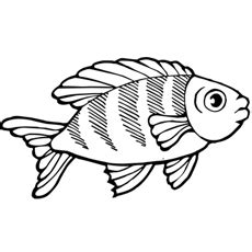 printable fish eyes fish ball drawing free colouring pages