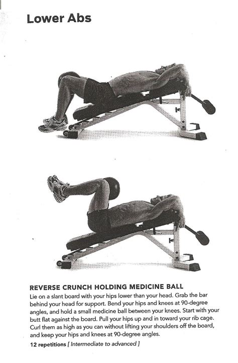 reverse crunch on bench pin by kettleyoga chick on abdominal exercises pinterest