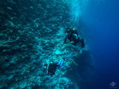dive blue scuba divers at the blue seaunseen