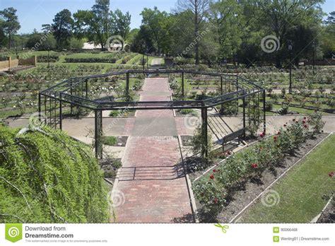 design center tyler tx rose garden has seen from garden center tyler editorial