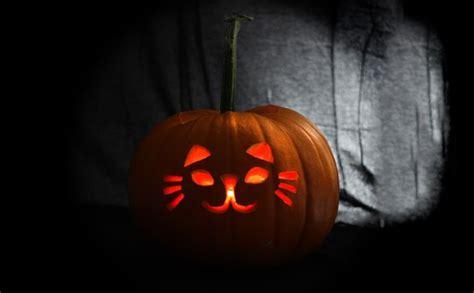easy pumpkin carving easy pumpkin carving ideas free stencils