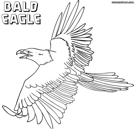 coloring pages of eagle eagle coloring pages coloring pages to download and print
