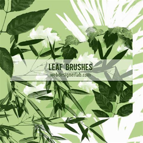 leaf pattern brush free leaf brushes photoshop brushes