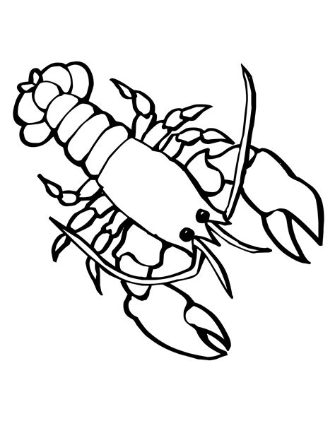 22 Marine Life Coloring Pages 930 Best Adult Colouring
