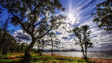 sunny summers day wallpapers  images wallpapers