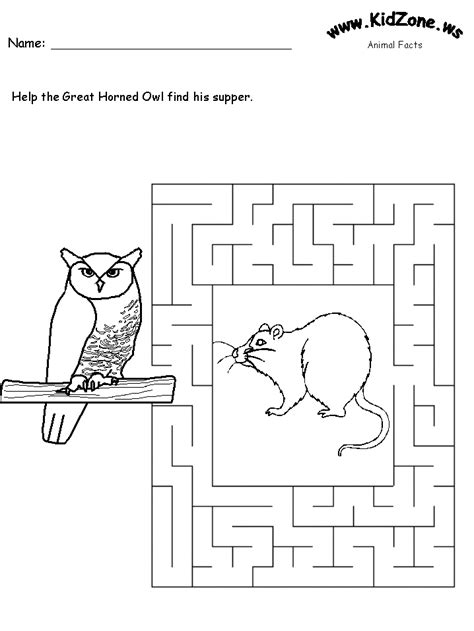 printable owl worksheets great horned owl maze
