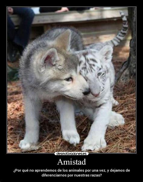 imagenes goticas de amistad desmotivaciones de amistad im 225 genes taringa