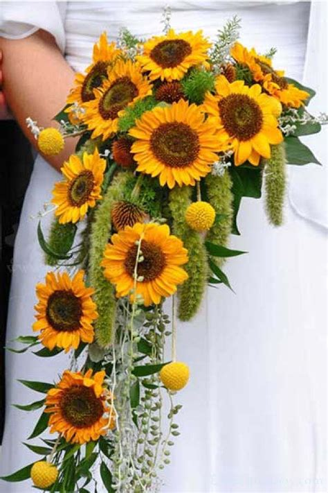 warmth and happiness 20 sunflower wedding bouquet - Wedding Bouquet Sunflowers
