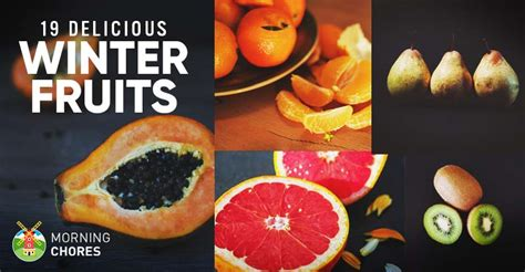 fruit zone menu winter fruits list 19 delicious fruits you can eat grow