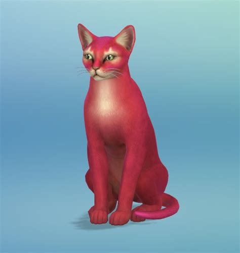 sims 4 cats and dogs cheats the sims 4 cats dogs 2 new cat screenshots sims community
