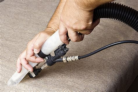 bed bug carpet cleaner carpet cleaning for bed bugs carpet nrtradiant