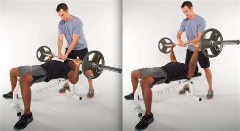 Spotter Bench Press Bench Press Bar Guidelines On How To Bench Press Bench