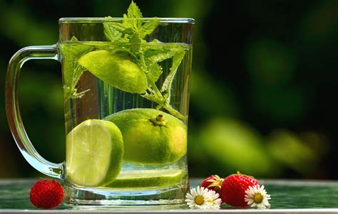 picture water lemon leaf mint strawberry daisy