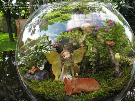 fairy terrarium 14 fabulous and mini gardens