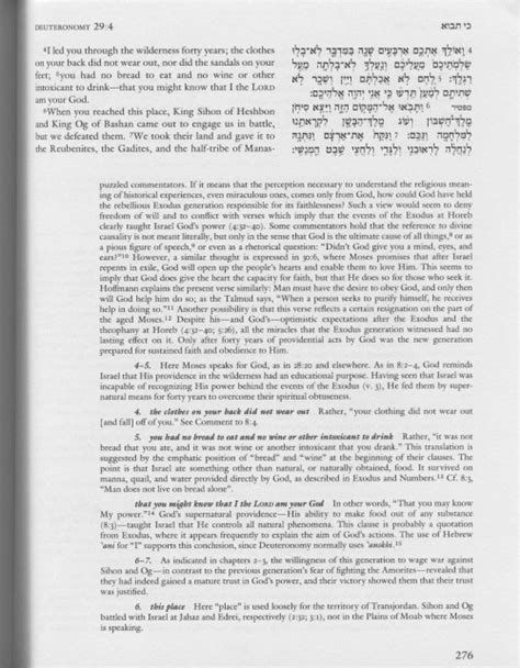 the jps rashi discussion torah commentary jps study bible books the jps torah commentary deuteronomy logos bible software