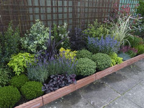 Small Garden Plants Ideas Low Border Plants Plants Are An Important Part Of Any Garden Without Evergreen Plants