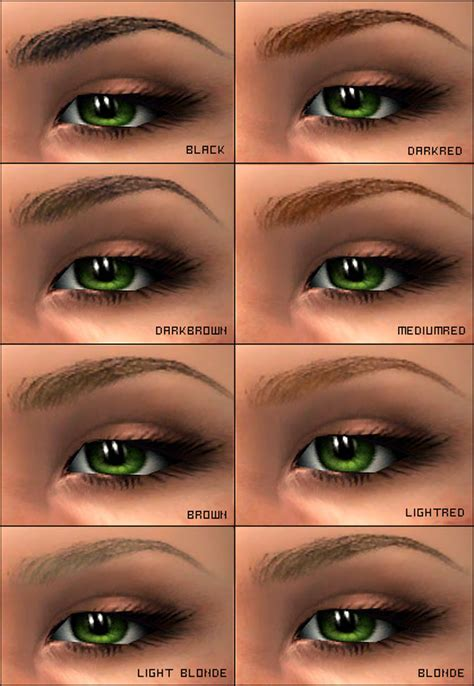 Beautiful Eyebrows Tips by Eyebrow Types Www Pixshark Images Galleries
