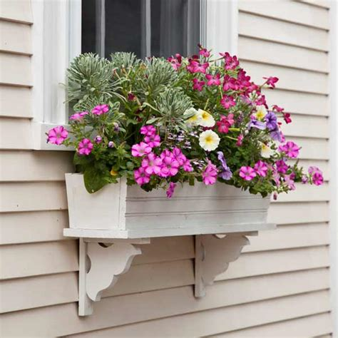 garden window boxes plant a better window box garden box garden petunias