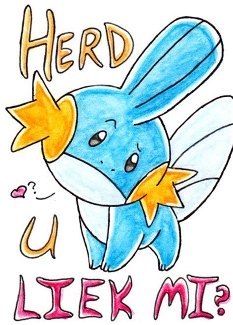 pokemon mudkip meme images pokemon images