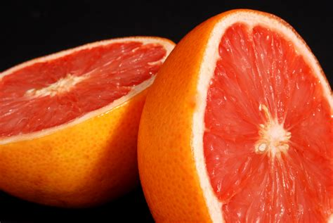 can dogs grapefruit grapefruit for dogs healthy or toxic