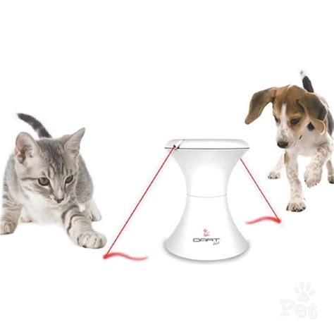 laser light for cats frolicat dart duo automatic laser light cat