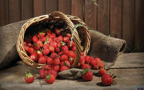 strawberry fruits wallpapers hd wallpapers id