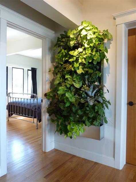 plants  walls vertical garden systems  light